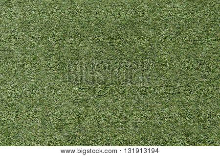 Empty Green Turf Floor Texture Pattern Background