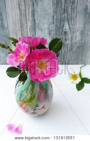 Small cololfrul glass vase with pink wild roses on white and gray background