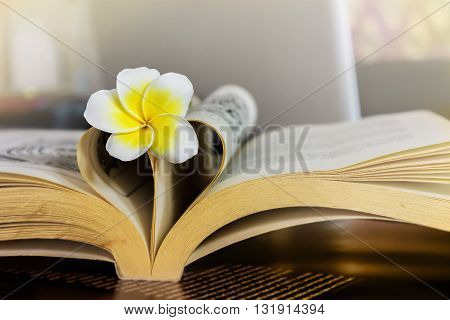 Sweet Romantic Flower Plumeria Or Frangipani On Book And Heart Shape On Sepia Vintage Colour Tone Wi