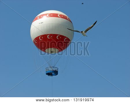 A bird flying with a ballon in the background