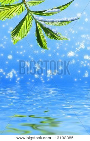 Green leaf on abstract snowflake background reflected in rendered water