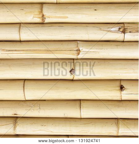 Old bamboo fence background; Old natural bamboo fence texture background