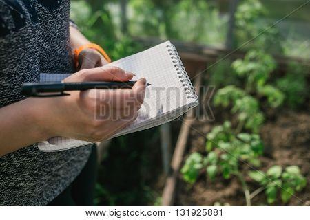 Closeup hands of greenhouse worker taking notes in seedlings in nursery. Top view.
