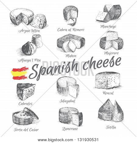 Vector illustrated Set #4 of Spanish Cheese Menu. Illustrative sorts of cheese from Spain