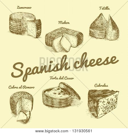 Vector illustrated Set #3 of Spanish Cheese Menu. Illustrative sorts of cheese from Spain