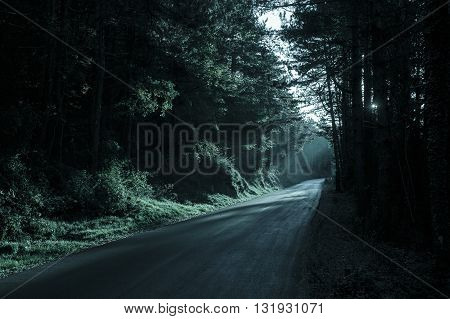Spooky dark forest with empty road in receding light. Emotional gothic background eerie natural scene concept.