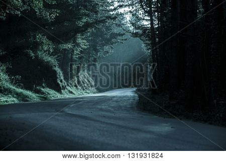Dark forest with empty road in receding light. Emotional gothic background eerie natural scene concept.