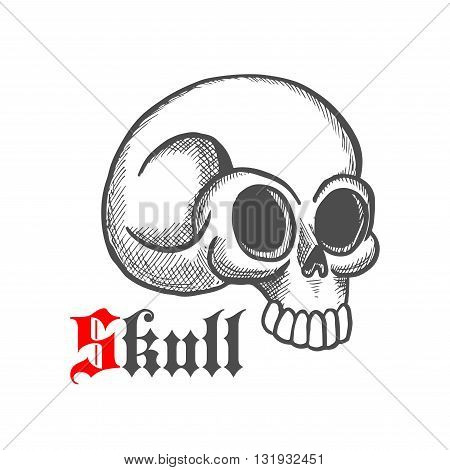 Vintage engraving illustration of monstrous human skull with broken temporal bone. May be use as tattoo, jewelry or t-shirt print design