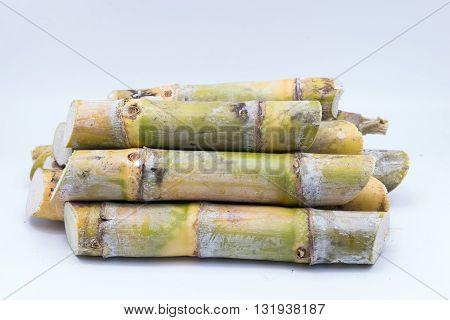 Close up sugarcane on white background.sugarcane, sugarcane, Sugarcane. sugarcane. sugarcane