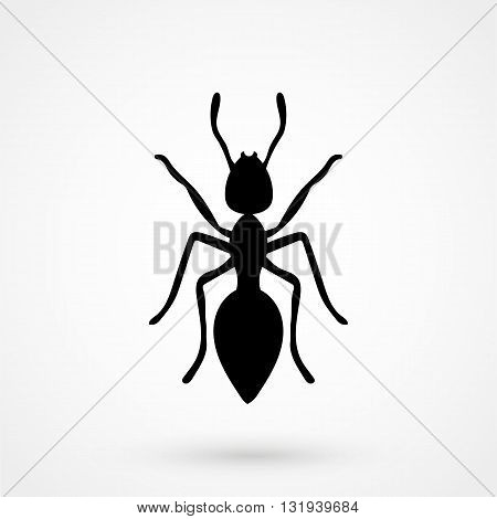 Ant Icon Black Vector On White Background
