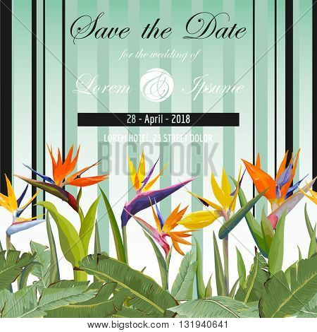 Save the Date. Wedding Card. Tropical Flowers. Tropical Card. Vector. Floral Background.