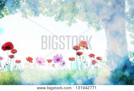 landscape with poppy flowers and single tree