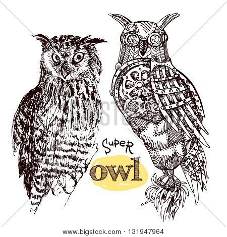 Vector hand drawn mechanical owls. Mechanical sketch animal. Steampunk style owl. Natural owl sketch style.