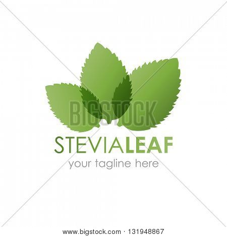 Stevia leaf logo vector illustration. Logotype with three green stevia leaves