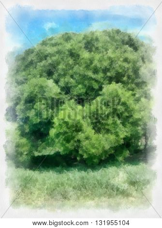 Watercolor landscape tree and sky clouds. Beautiful watercolor background for your website, banners, covers or other printed materials