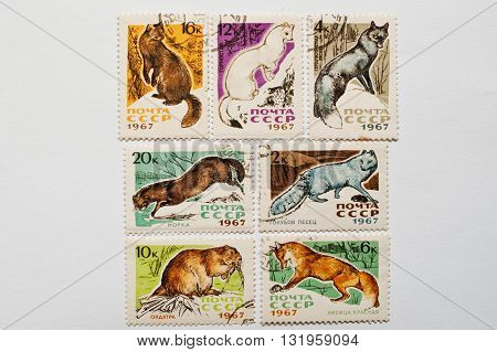 Uzhgorod, Ukraine - Circa May, 2016: Collection Of Postage Stamps Printed In Ussr Shows Different Wi