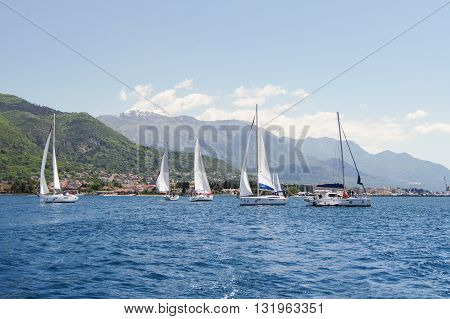 Tivat, Montenegro - 26 April, Seascape with yachts, 26 April, 2016. Regatta