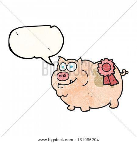 freehand speech bubble textured cartoon prize winning pig