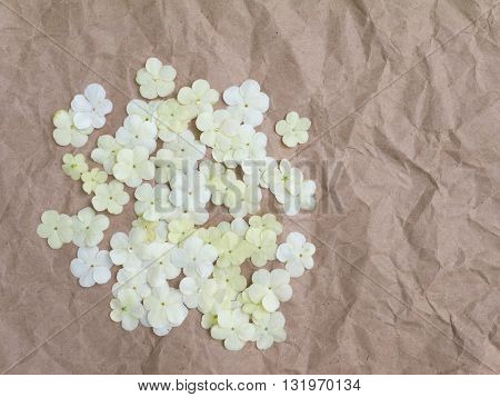 Heap of viburnum flowers on the brown crumpled paper