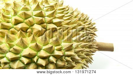close up Thorns of durian , Tropical fruit