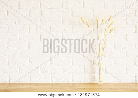 Front view of wheat spikes on wooden surface and white brick background. Mock up
