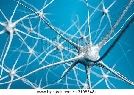 Neurons In Brain, 3D Illustration Of Neural Network.
