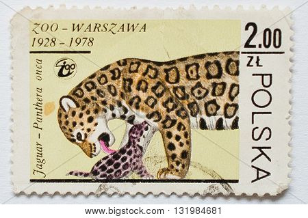 Uzhgorod, Ukraine - Circa May, 2016: Collection Of Postage Stamps Printed In Poland Shows Jaguar Pan