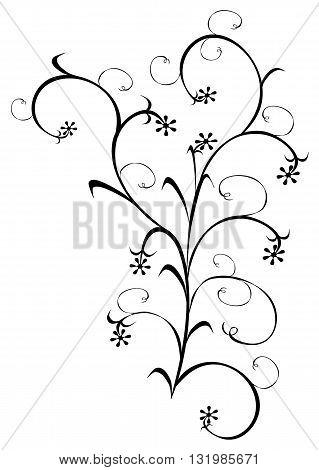 Dark floral design - modern vector illustration.