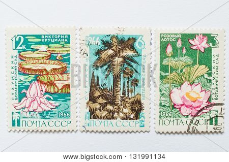 Uzhgorod, Ukraine - Circa May, 2016: Collection Of Postage Stamps Printed In Ussr, Shows Sukhumi Bot