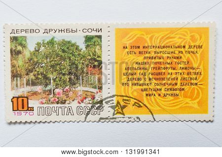 Uzhgorod, Ukraine - Circa May, 2016: Postage Stamp Printed In Ussr, Shows Friendship Tree, Unique Ci