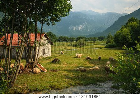 Lonely hut in the beautiful mountain landscape in Montenegro