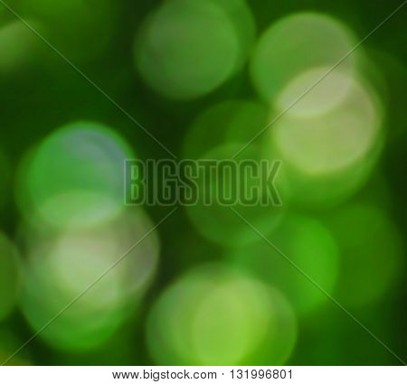 abstract bokeh on a green background, soft and reflection
