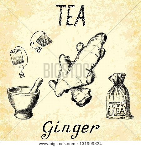 Ginger herbal tea. Set of vector elements on the basis hand pencil drawings. Ginger root tea bag mortar and pestle textile bag. For labeling packaging printed products