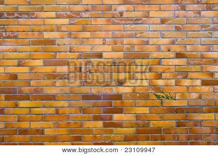 Dirty wall of clinker bricks