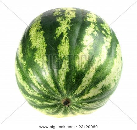 One Full Single Striped Green Watermelon