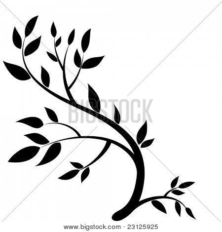 Design element - graphic drawing of a brunch with leaves