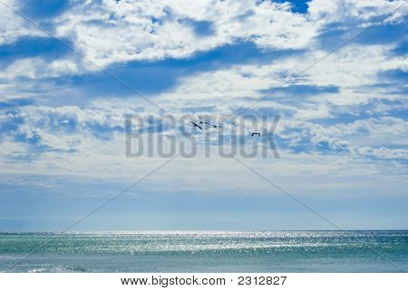 Beatiful Sea And Sky