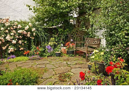 Lovely Garden With A Wooden Bench