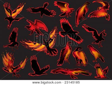 illustration with eagle silhouettes isolated on black background
