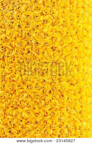 Gelb rosa Hintergrund