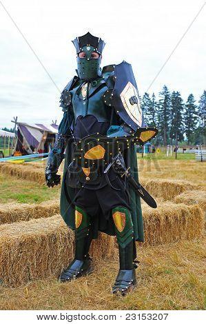 Standing green knight