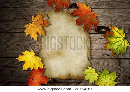 Autumn leaves over old wooden background with blank paper scroll