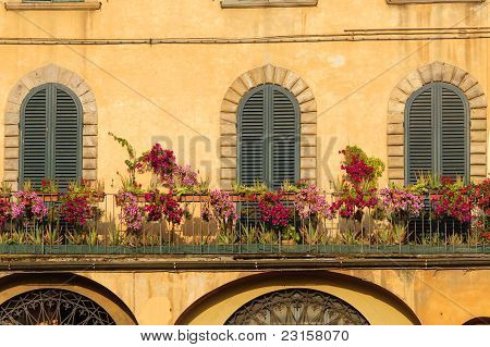 Lucca, Three Closed Windows