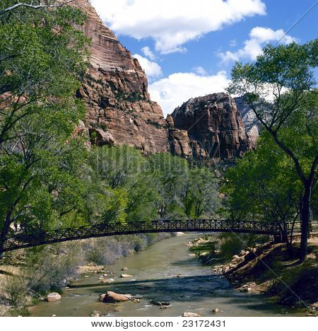 Footbridge In Zion National Park