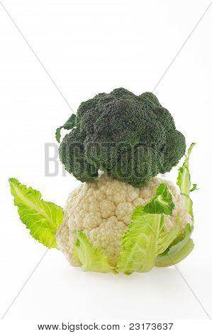Couve-flor e brócolis no fundo branco