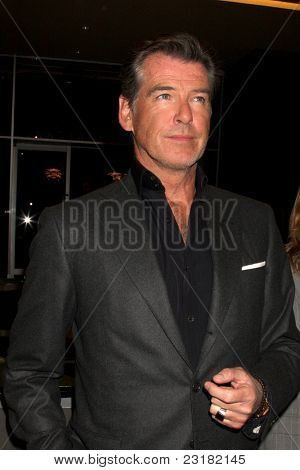 "LOS ANGELES - MAR 25: Pierce Brosnan at the premiere of ""The Greatest"" at the Linwood Dunn Theater on March 25, 2010 in Los Angeles, California"