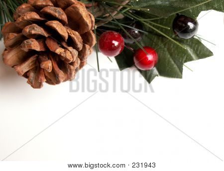 Christmas  Pinecone And Holly