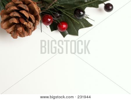 Christmas  Pinecone And Holly 2