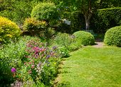 Green summer walled english formal garden with lawn blooming flowers and hedgerow in background, Sou poster