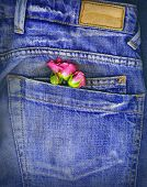 stock photo of blue rose  - A couple of roses tucked in a denim pocket - JPG